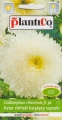 Астри Принсес бели - Callistephus chinensis - 1 г