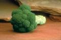 Броколи Маратон / Maraton F1 - Brassica oeracea - 2500 сем