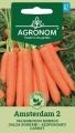 Моркови Амстердам 2 - Daucus carota - 3 гр