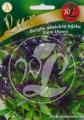 Босилек тайски Сиамска кралица-Ocimum basilicum-1 гр