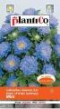 Астри ниски Мини СИНИ - Callistephus chinensis-1 г