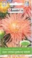 Астри игловидни сьомга - Callistephus chinensis - 1 г
