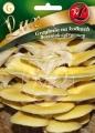 Гъба КЛАДНИЦА лимонена стрида-Pleurotus citrinopileatus-20 пина