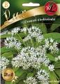 Левурда, мечи лук, див чесън - Allium ursinum - 0.5 гр