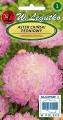 Астри божуровидни бяло-розови  - Callisteph.chin. - 1 г
