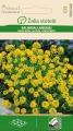 Алисум скален - Allysum montanum  - 0.5 гр