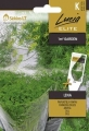 Копър за саксии Лена / Lena -Anethum graveolens - 5 гр