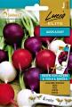 Репички МИКС - бели, червени и лилави, семена на ЛЕНТА - 4 м